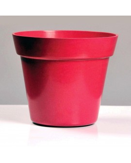 MACETERO ORIGIN RED RUBI D19X16