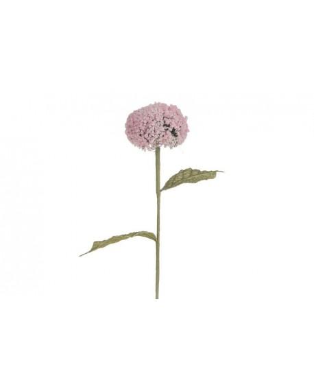FLOR ALCHEMILLA ROSA 57cm