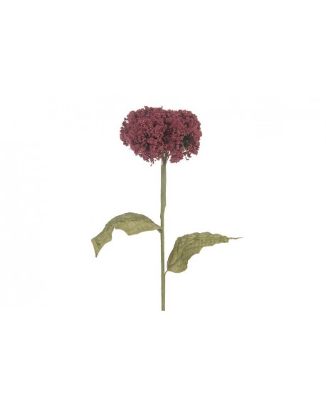 FLOR ALCHEMILLA ROSA OSC 57cm