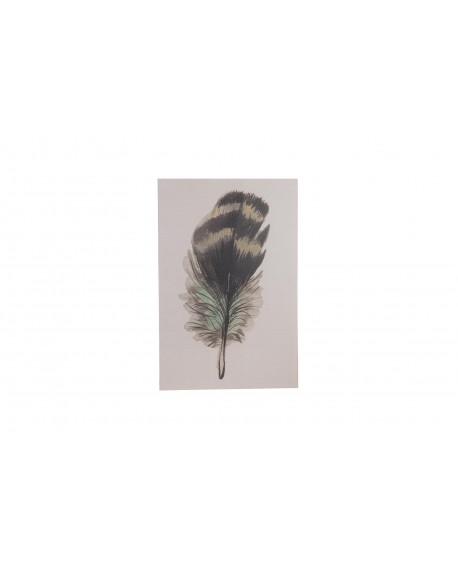 Lienzo pluma impresa  38x58x2.5cm