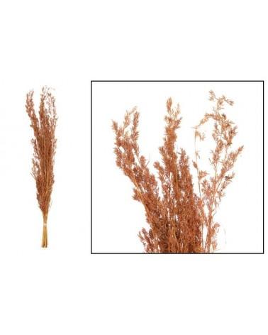 GRASS 100 CM 100 GR TERRA COTTA