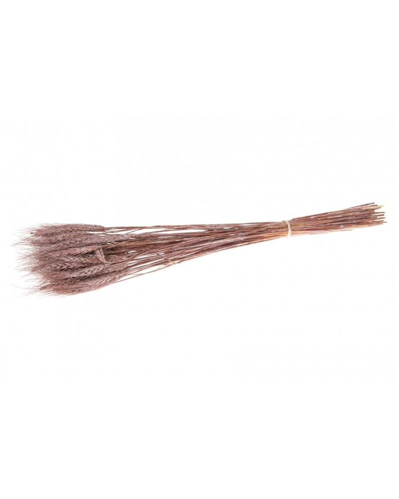 Hierba de trigo 60-65cm 100gr rosa viejo