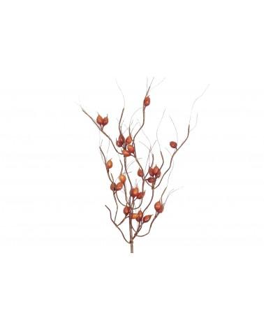 Rosehip branch foam 78cm