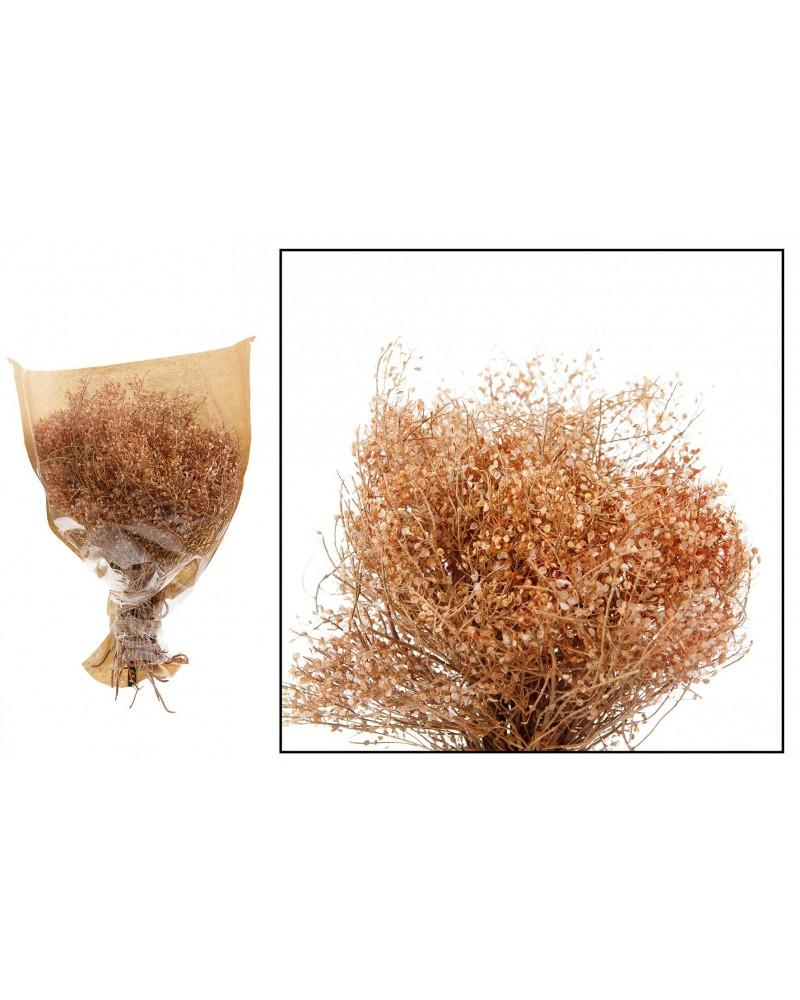 Lupidium salvaje paquete 60gr