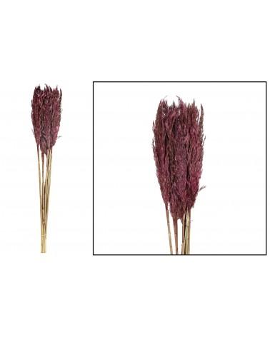 Plume reed long 105gr