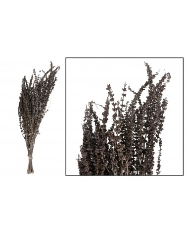 Palma grass 50-65cm 100gr